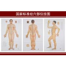 Acupuncture Wall Charts Download Buy Acupuncture Wall Chart And Get Free Shipping On