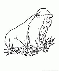 Coloriages Gorille Les Animaux