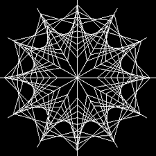 procedures for SPIDER WEB