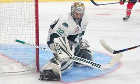 Tustin native, Jr. Kings graduate Wolf selected WHL Western Conference  Goaltender of the Year