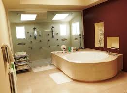 image of luxury handicap bathtubs and showers