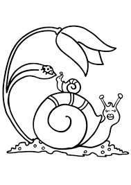 Coloriage Mandala Dauphin Escargot Sur Hugolescargot Com