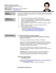 Post Resume Online For Jobs Best Of Cv Vs Resume Singapore Fungram