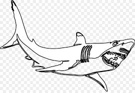 hammerhead shark clipart black and white. Delighful Hammerhead Great White Shark Black And Clip Art  Hammerhead Shark Clipart To And White O