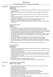 Risk Consultant Resume Samples Velvet Jobs