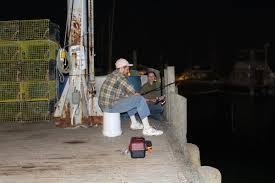 In Search Of The Maine Kraken Midcoast Buy Localmidcoast
