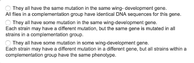 while working in a genetics lab over the summer y com expert answer