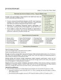 Executive Resume Resume Cv Cover Letter