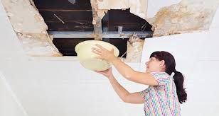 Water Damage and Your Health | Sylvane