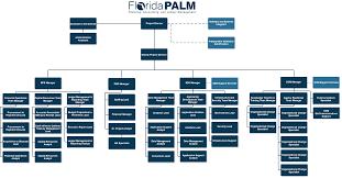 Project Organization Florida Palm