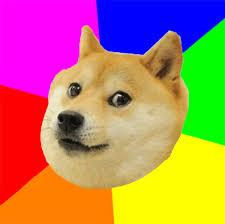 Advice Doge Template Advice Dog Know Your Meme