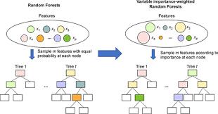 Variable Importance Weighted Random Forests Springerlink