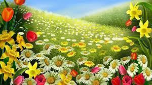 Beautiful Flower Wallpaper - YouTube
