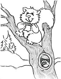 Cute Squirrel Coloring Pages At Getdrawingscom Free For Personal