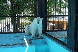 帯広 動物園