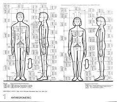 Anthropometric Human Dimension Architecture Design