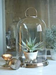 glass bell jar i like bell jars this one is particularly nice silver glass bell jar