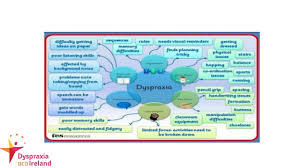 Accomodiating People With Dyspraxia And Other Disabilities