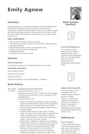 Assistant Account Executive Resume samples
