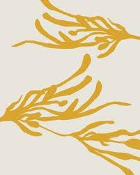 Pin by Alyssa Yarberry on Thompson HW | Art, Illustration art, Art  inspiration