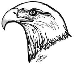 Small Picture Bald Eagle coloring Free Animal coloring pages sheets Bald Eagle
