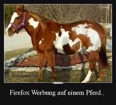 Firefox Werbung Auf Einem Pferd Lustige Bilder Sprüche Witze