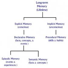 Long Term Memory Chart Long Term Memory Chart The Peak Performance Center