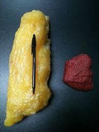 1 kilo fett