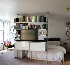 Wonderful Bookshelf Room Dividers Ikea Pics Design Inspiration