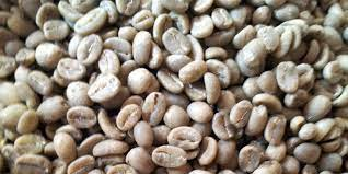 White coffee beans are ground using special grinders resulting in a fine yellow powder that resembles saw dust. Do You Really Know What White Coffee Is Cliff Pebble