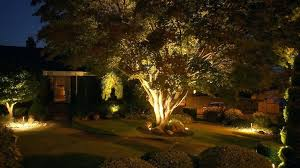 led landscape up lighting landscape up lighting tree archives 6 westinghouse hi intensity led landscape lighting