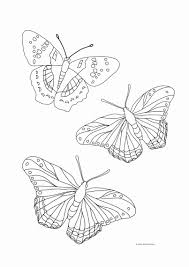 (perfect for adults with memory problems or alzheimer's) find more we have 60 butterfly coloring pages to choose from. Coloring Pages For Kids Butterfly Luxury Coloring Page Butterfly Free Printable Coloring Pages Meriwer Coloring