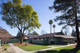 1 Bedroom Apartments In Davis Ca Impressive Ideas