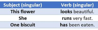 Singular Or Plural Nouns Ieltstutors