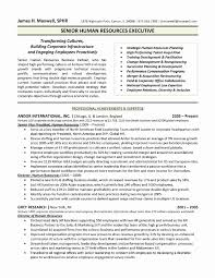 Sample Resume Format For Hr Executive Inspirational Enchanting