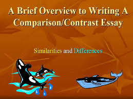 writing comparison contrast essay ppt dissertation literature  comparison contrast essay ppt slideplayer