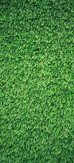 wallpaper | nj44-grass-green-pattern-nature