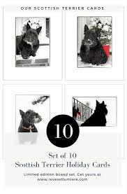 20 amazing gifts your dog will love pawsome gifts for dogs dog gifts for dogs and dogs dogs dog gifts and dog