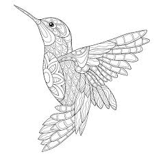 51afd43dae929d15d193f322bcfd3fb7 25 best ideas about adult coloring pages on pinterest colouring on creative coloring birds