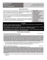 It Consultant Resume Sample Samples Executive Resume Services