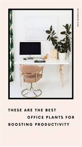 cool things for your office. Cool Things For Your Office Desk Inspirational Home Decorating Also Fresh 270 Best Studio Inspiration