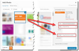 Image SEO: Alt Tags, Title Tags, and Everything In-Between | Image ...