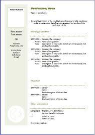 a curriculum vitae format cv format template