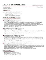 Resume Examples, Professional Experience The Best Resume Template Education  Computer Skills Selected Personal Training:
