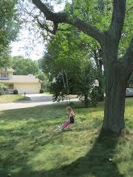 Tree Swing Hanging A Tree Swing Simplicitysoil
