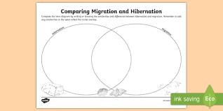 Plant And Animals Adaptations Venn Diagram Migration And Hibernation Venn Diagram Worksheet Activity Sheet