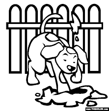 Small Picture Pets Online Coloring Pages Page 1