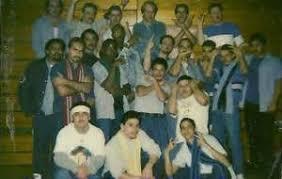 essays prison gangs  essays prison gangs
