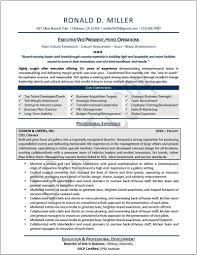 Healthcare Executive Resume Examples - Sradd.me