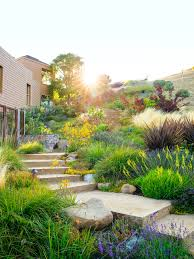 water wise garden designs
